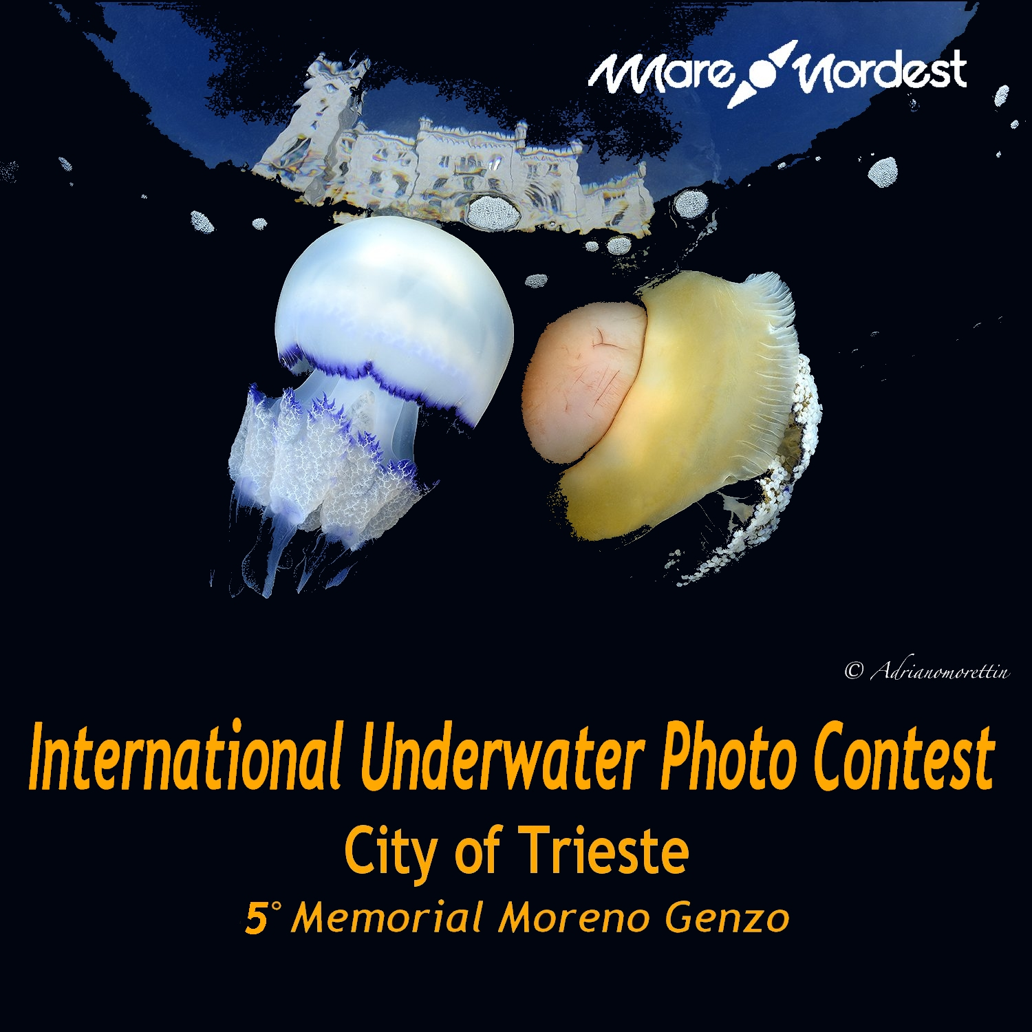 International Underwater Photo Contest