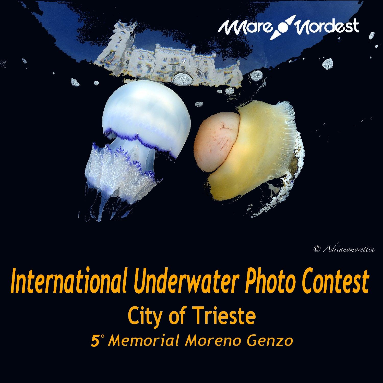 International Underwater Photo Contest