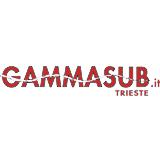 Gamma Sub